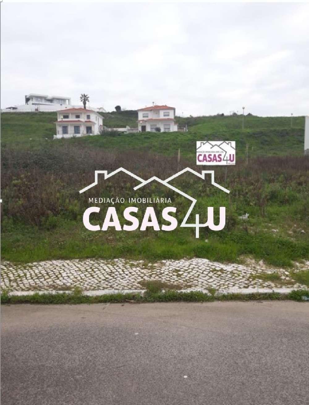Alcobaça Alcobaça terrain picture 176986