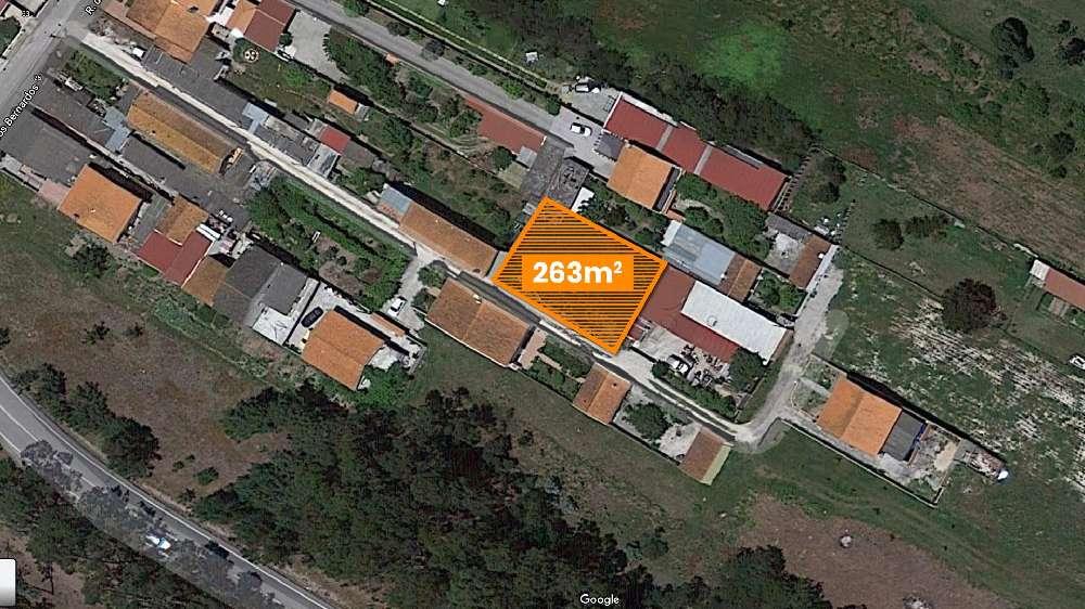 Oliveirinha Aveiro Haus Bild 173138