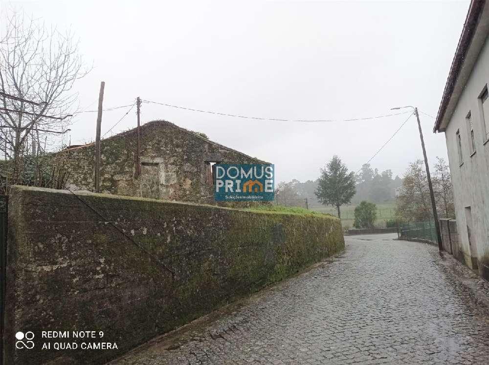 Braga Braga terrain picture 178980