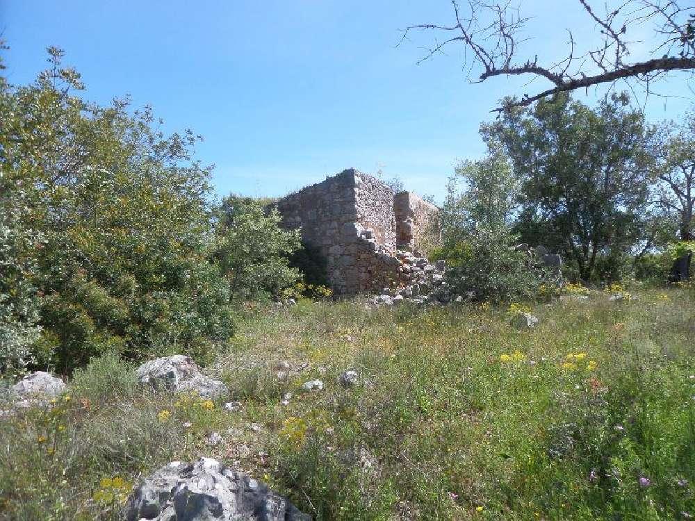 Salir Loulé terrain picture 168448