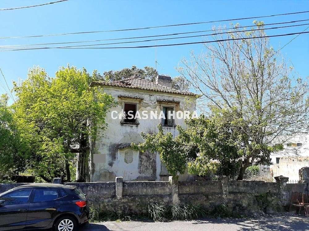 Rio de Mouro Sintra terrain picture 168537