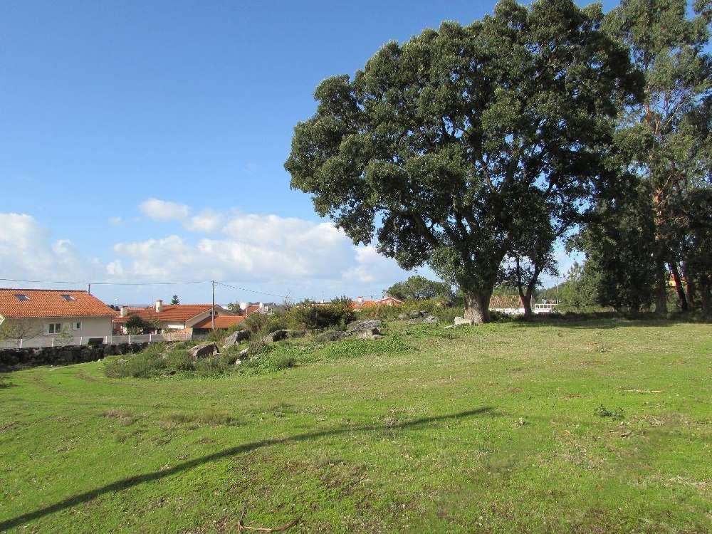 Esposende Esposende terrain picture 169091