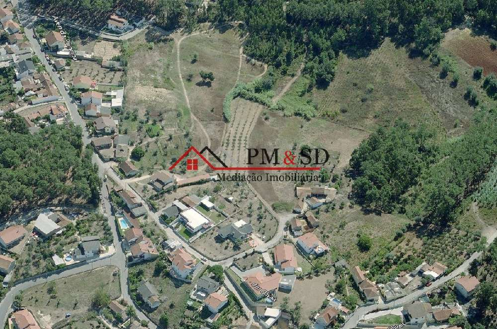 Leiria Leiria terrain picture 183434
