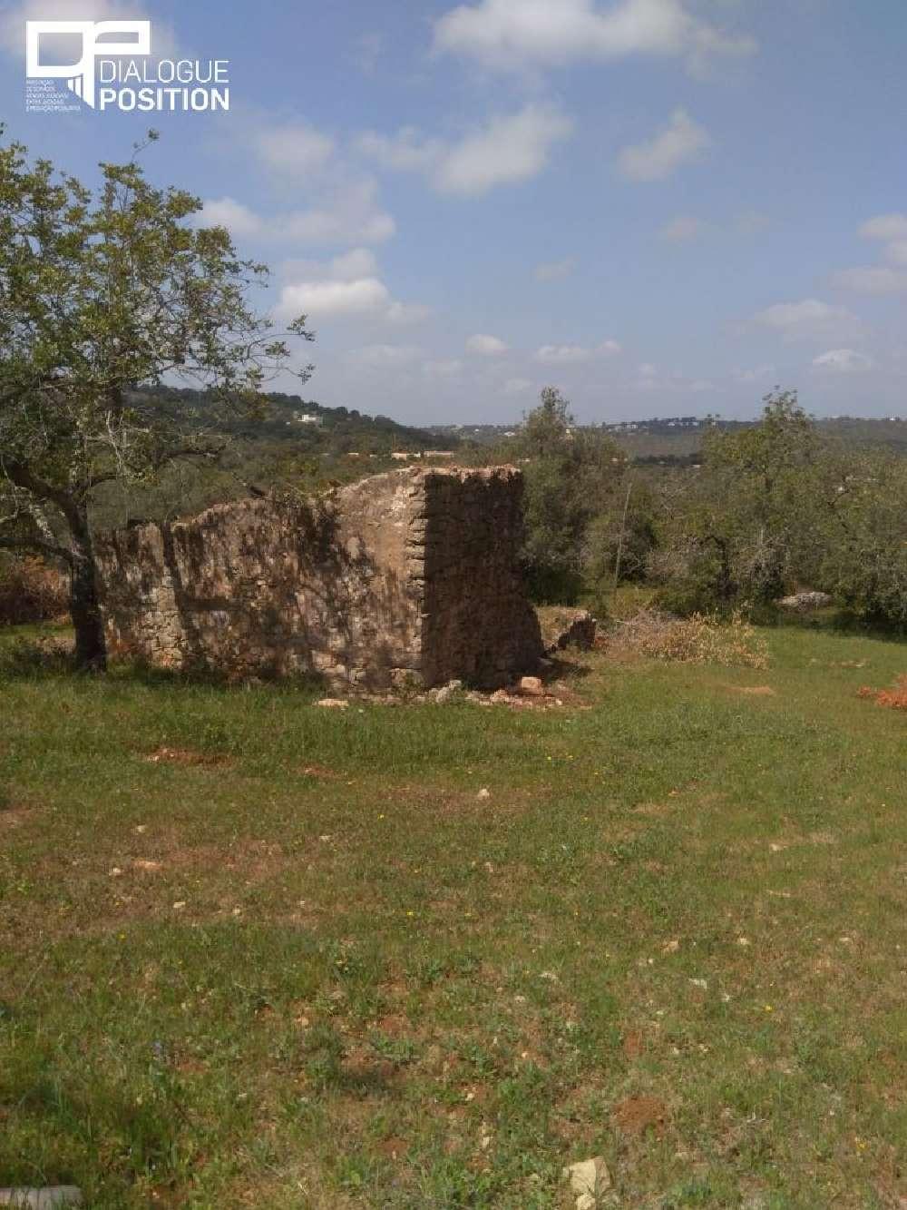 Faro Faro terrain picture 178737
