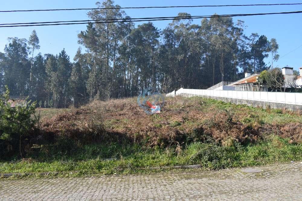 Santa Maria da Feira Santa Maria Da Feira terrain picture 178167