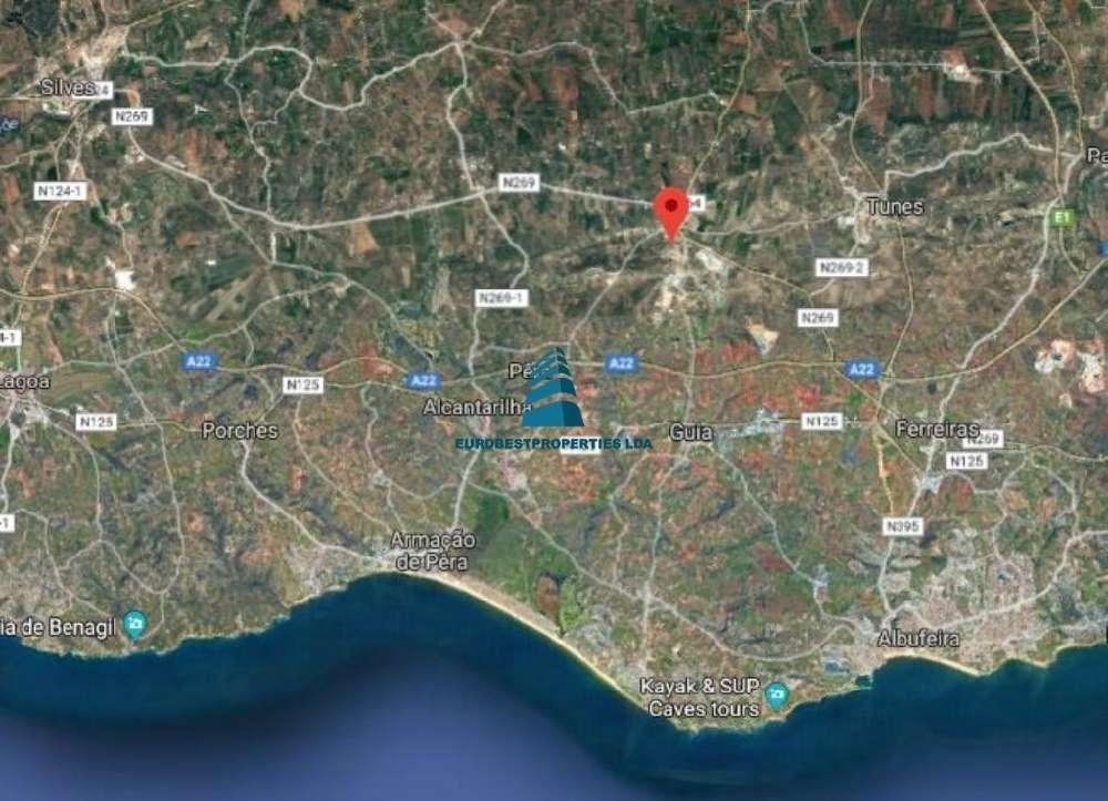 Silves Silves terrain picture 179444