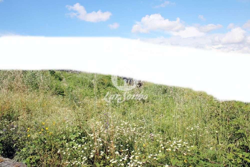 Midões Barcelos terrain picture 172288