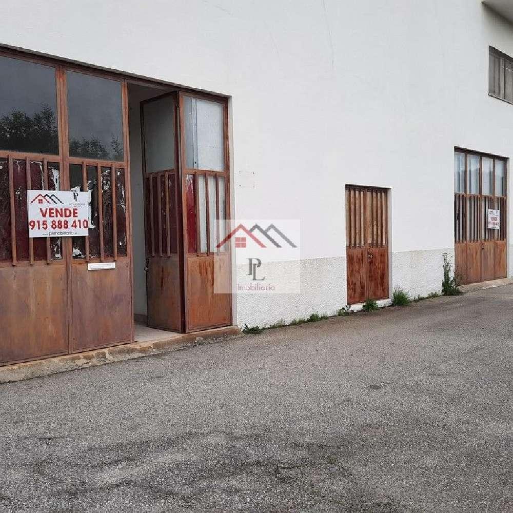 Tábua Tábua kommersiell photo 188222