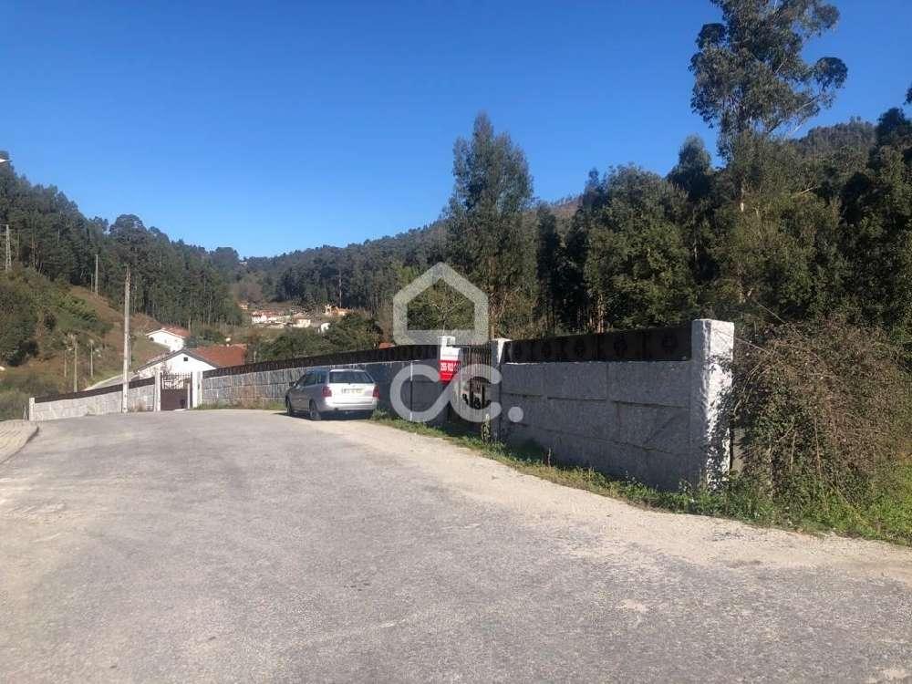 Sousela Lousada terrain picture 170032