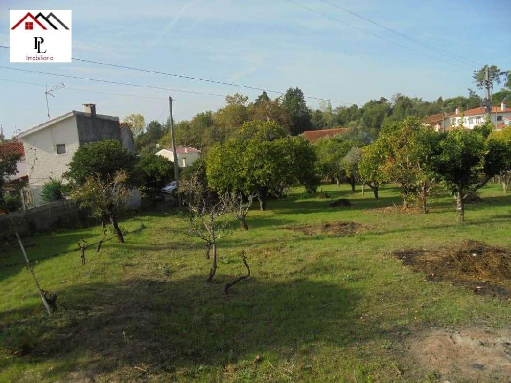Coimbra Coimbra casa foto #request.properties.id#