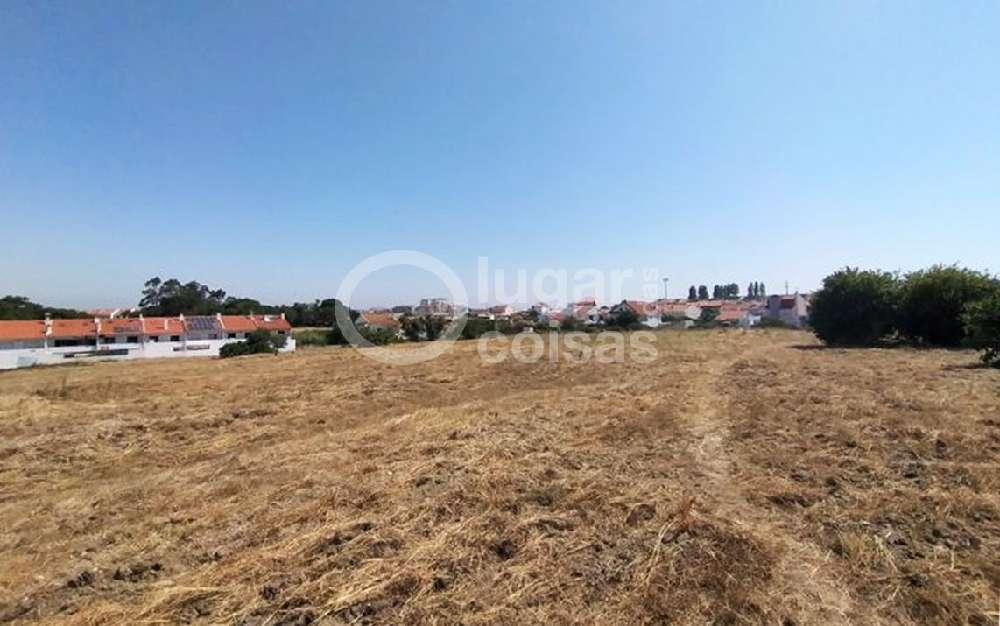 Seixal Seixal terrain picture 187046
