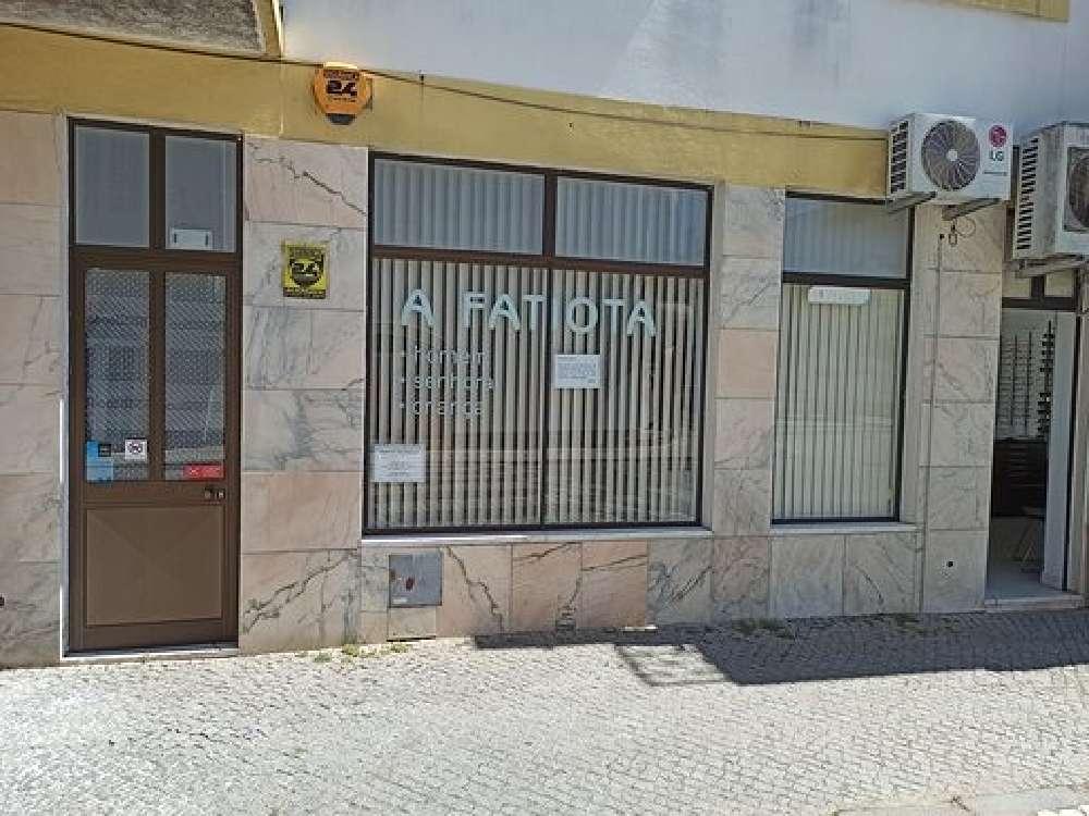 Gavião Gavião kommersiell photo 190167