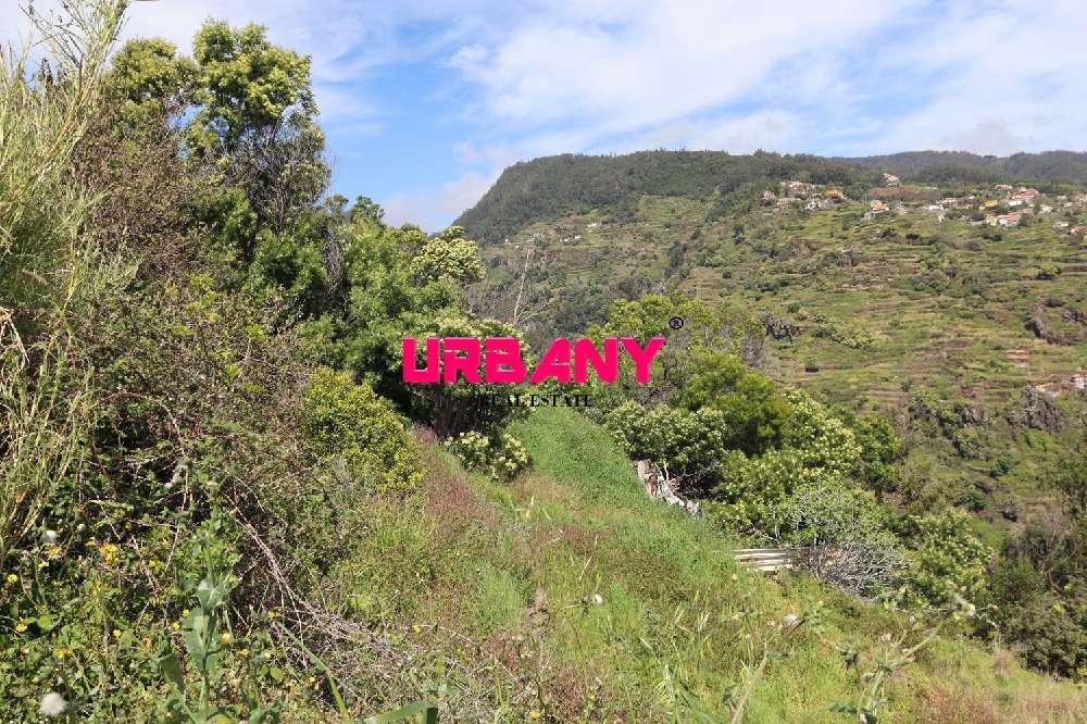 Santa Cruz Santa Cruz terrain picture 190719