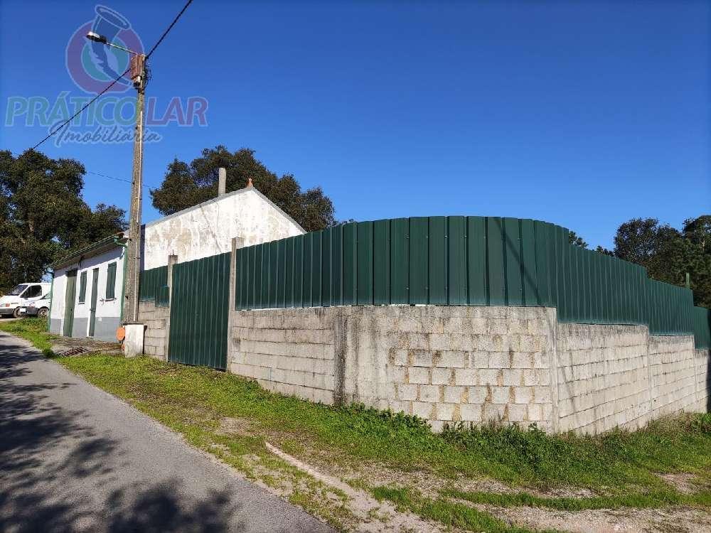 Oliveira do Bairro Oliveira Do Bairro Villa Bild 188603