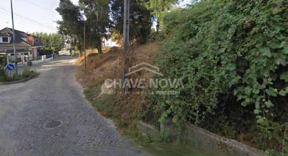 Sigoelos Paredes De Coura terrain picture 169726