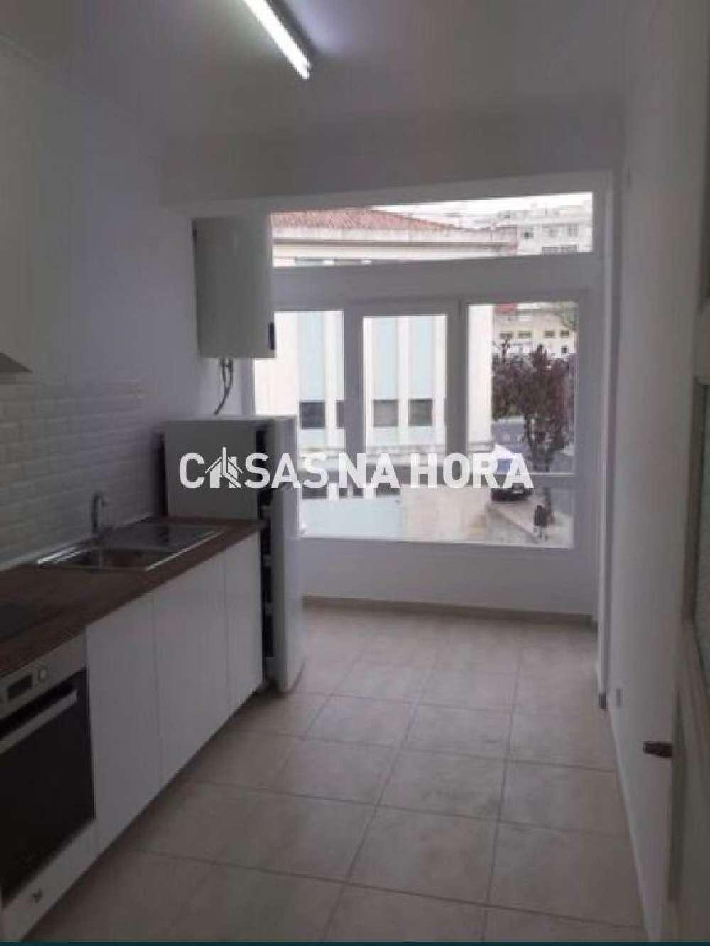 Amadora Amadora apartment picture 172020