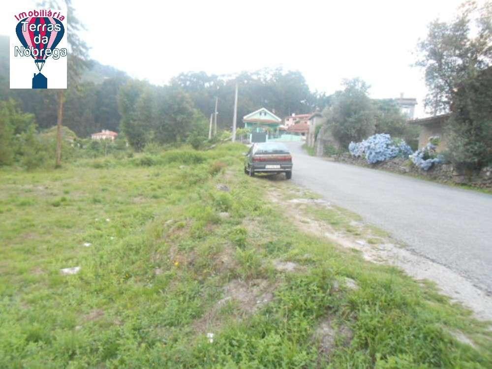 Vila Verde Vila Verde terrain picture 190403