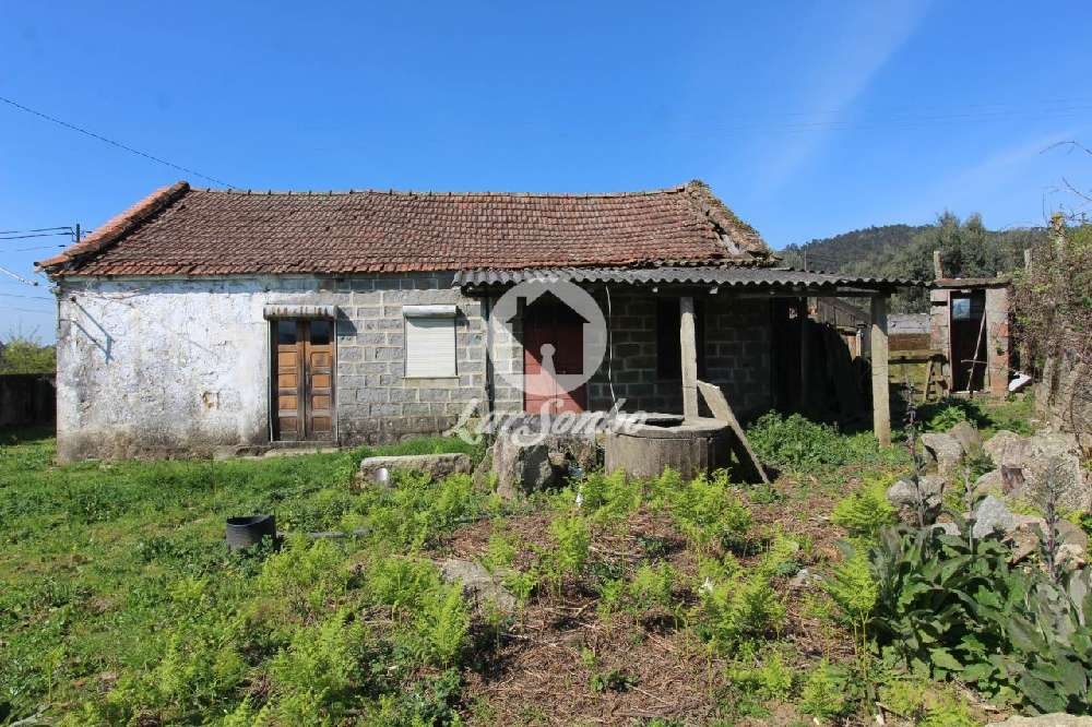 Lama Barcelos house picture 172259
