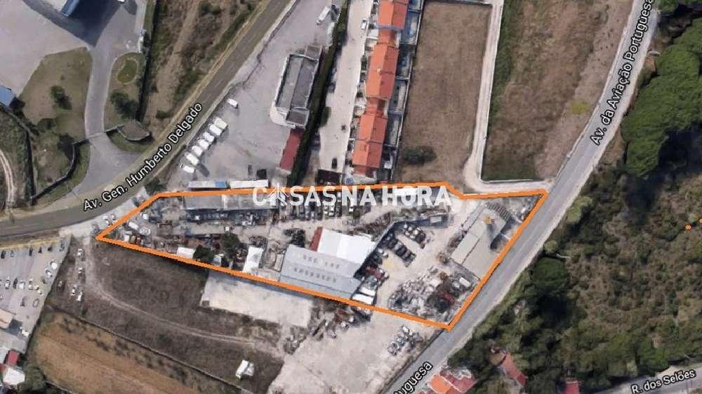 São João das Lampas Sintra terrain picture 168543