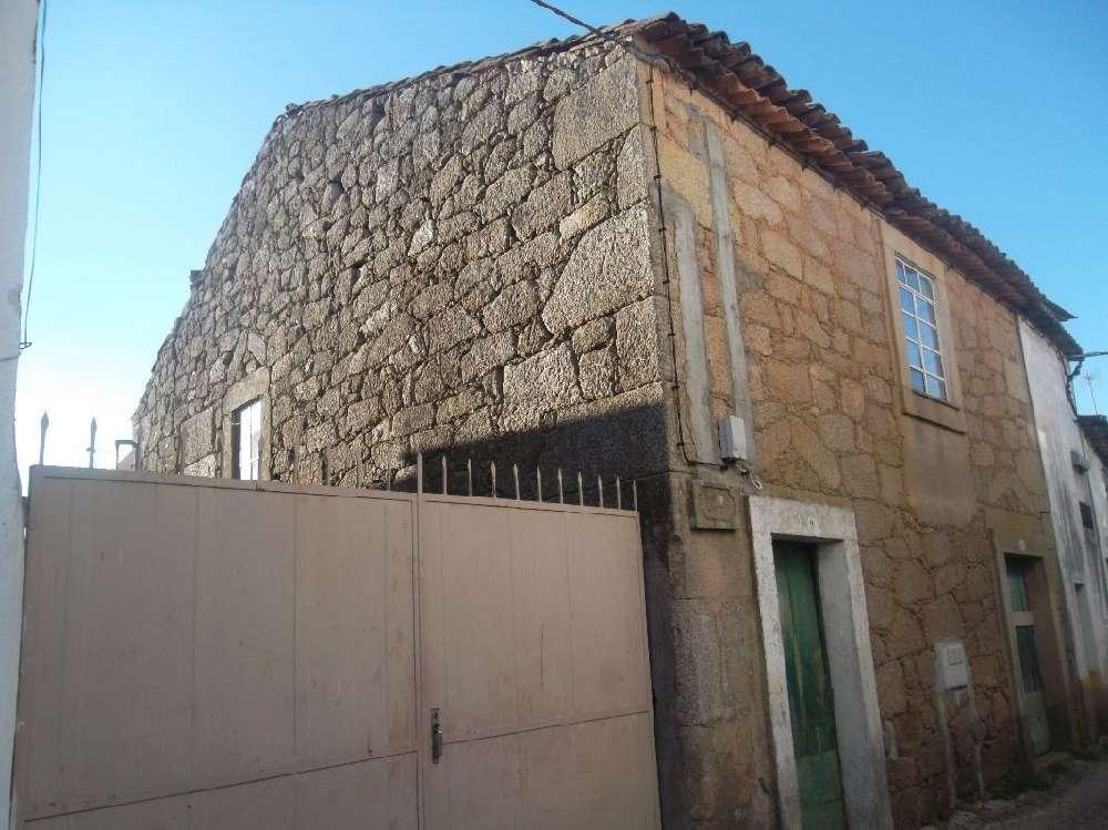 Castelo Branco Castelo Branco villa picture 186277