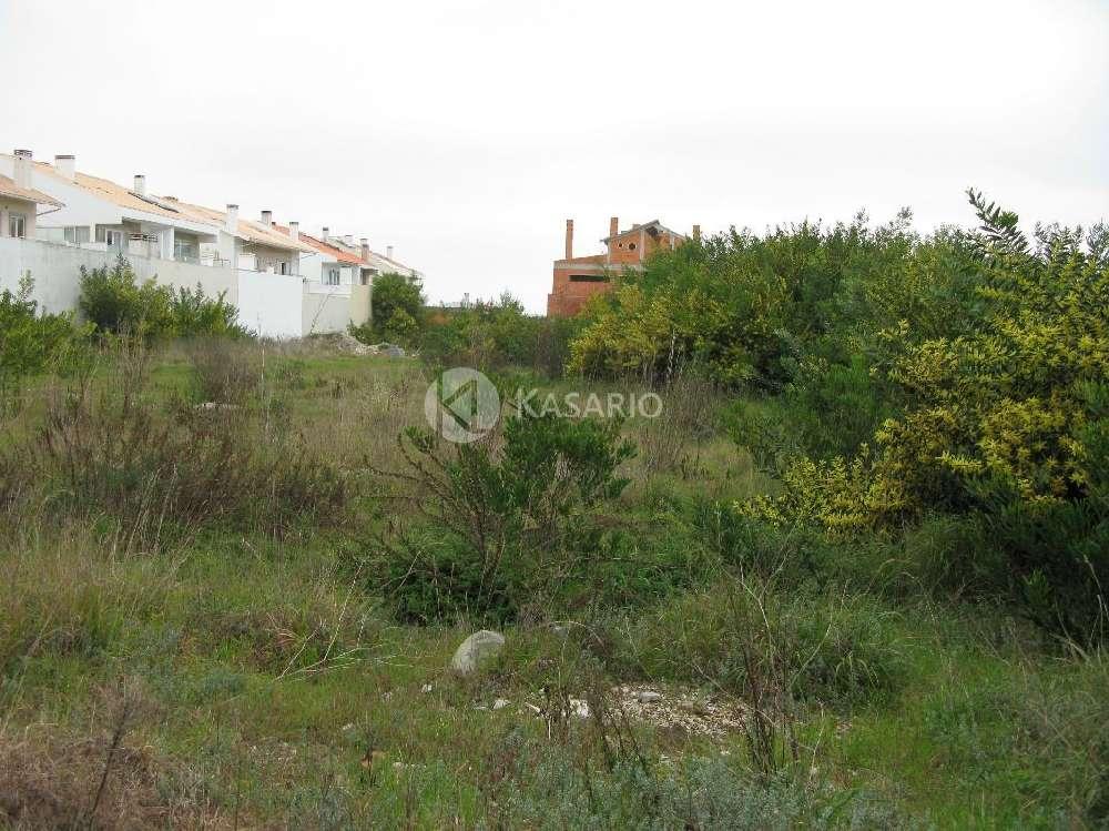 Espinho Espinho terrain picture 184628