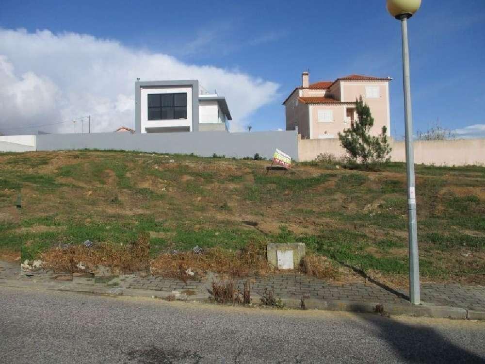 Silveira Torres Vedras terrain picture 167948