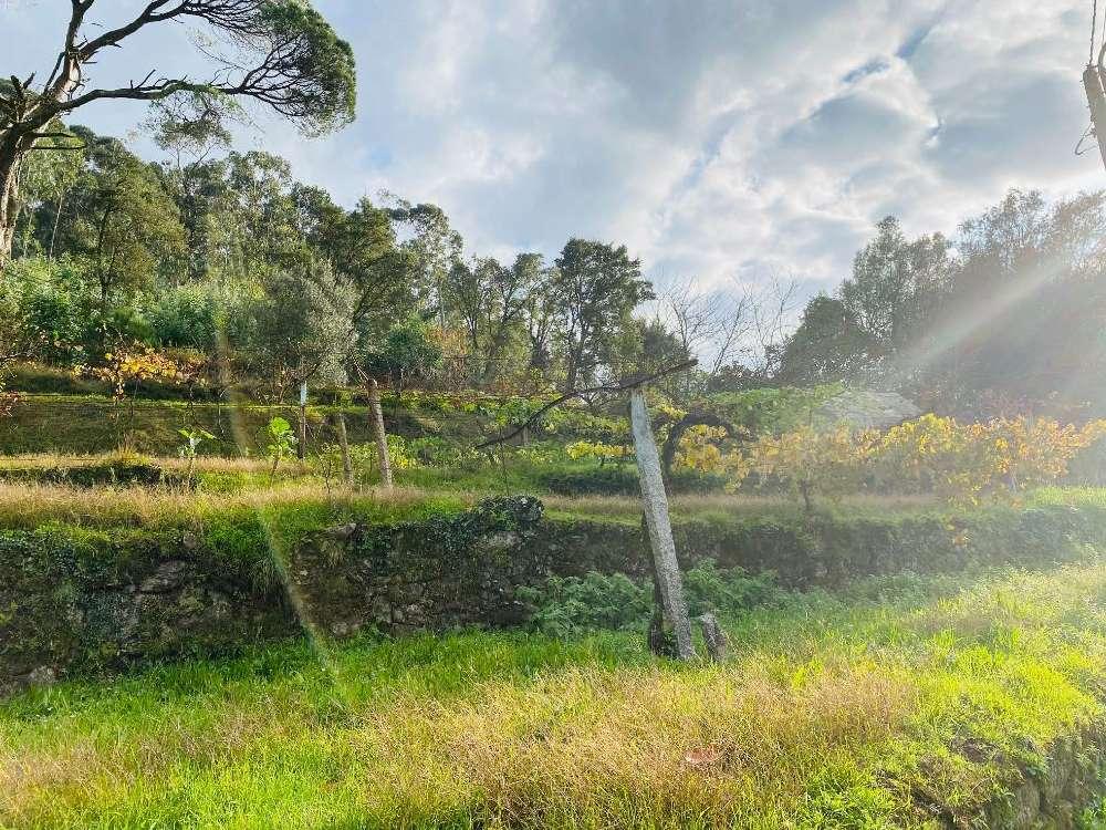 Aborim Barcelos terrain picture 168915