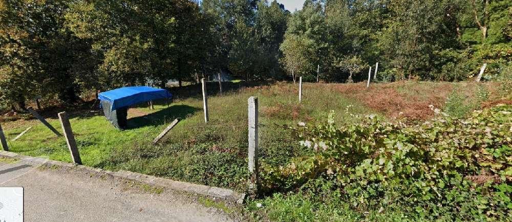 Cravaz Tarouca terrain picture 171055