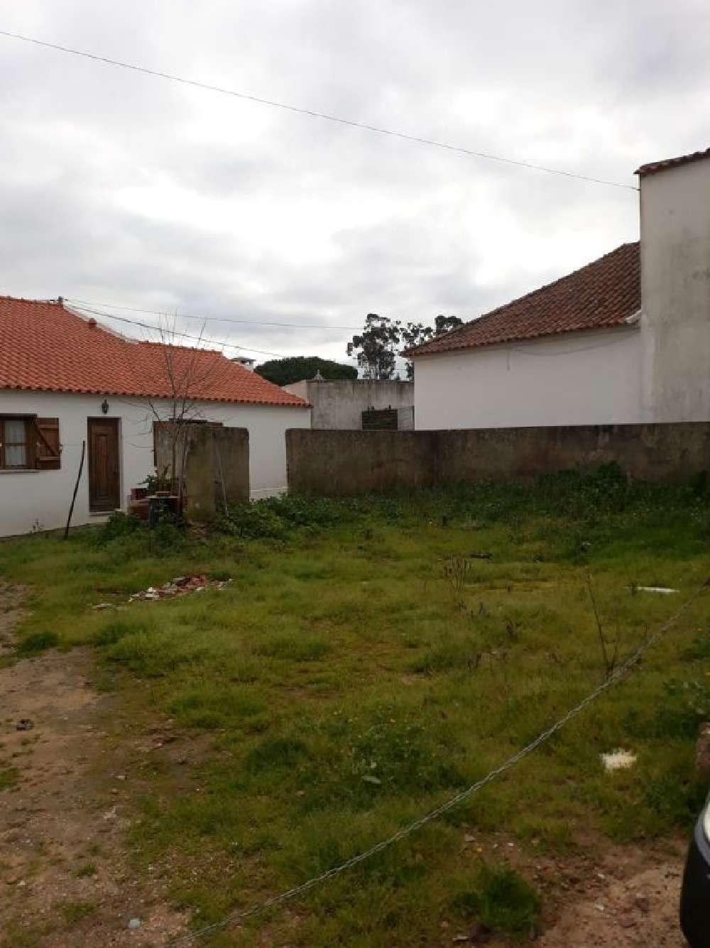 Ramalhal Torres Vedras terrain picture 171783
