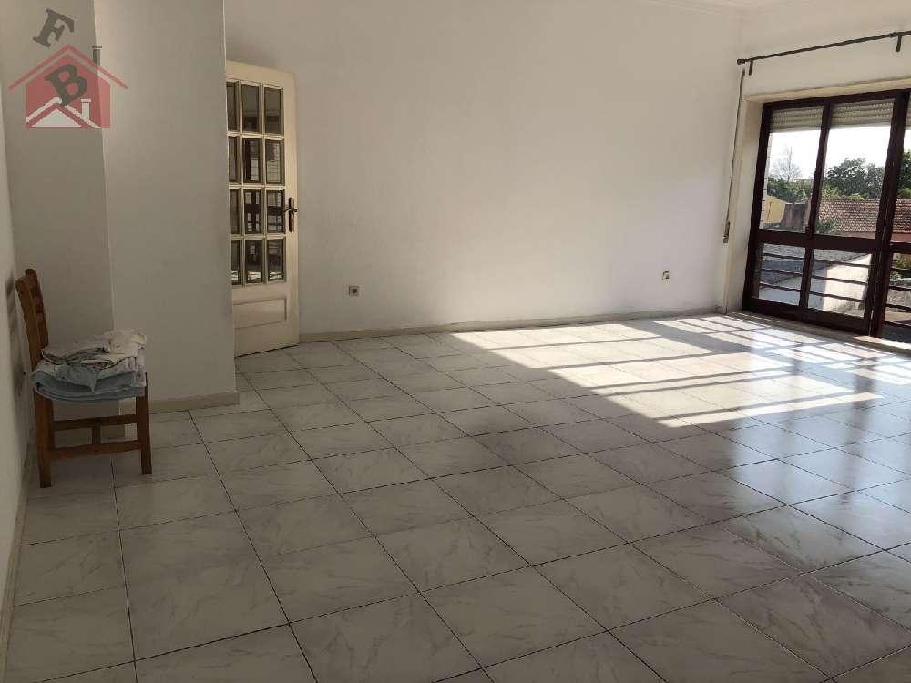 Matosinhos Matosinhos apartment picture 179573