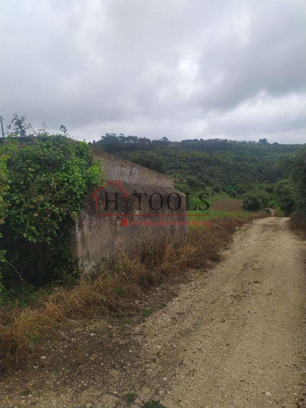 Alenquer Alenquer terrain picture 180528