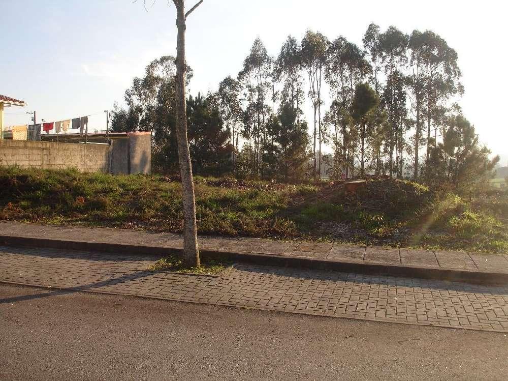 Vila Nova de Famalicão Vila Nova De Famalicão terrain picture 183715