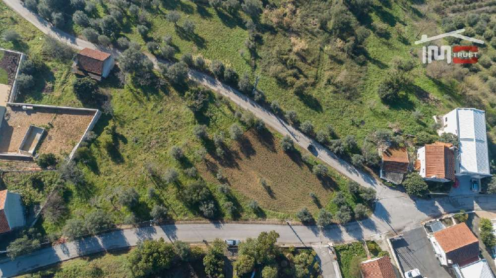 Cortes Leiria terrain photo 172036