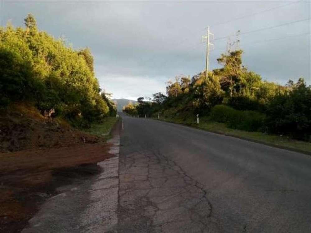 Ribeira Grande Lajes Do Pico terrain picture 173523