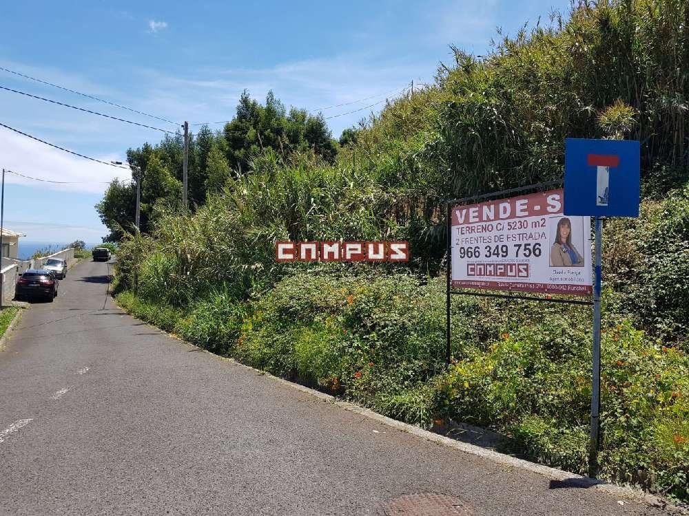 Santa Cruz Santa Cruz terrain picture 175341