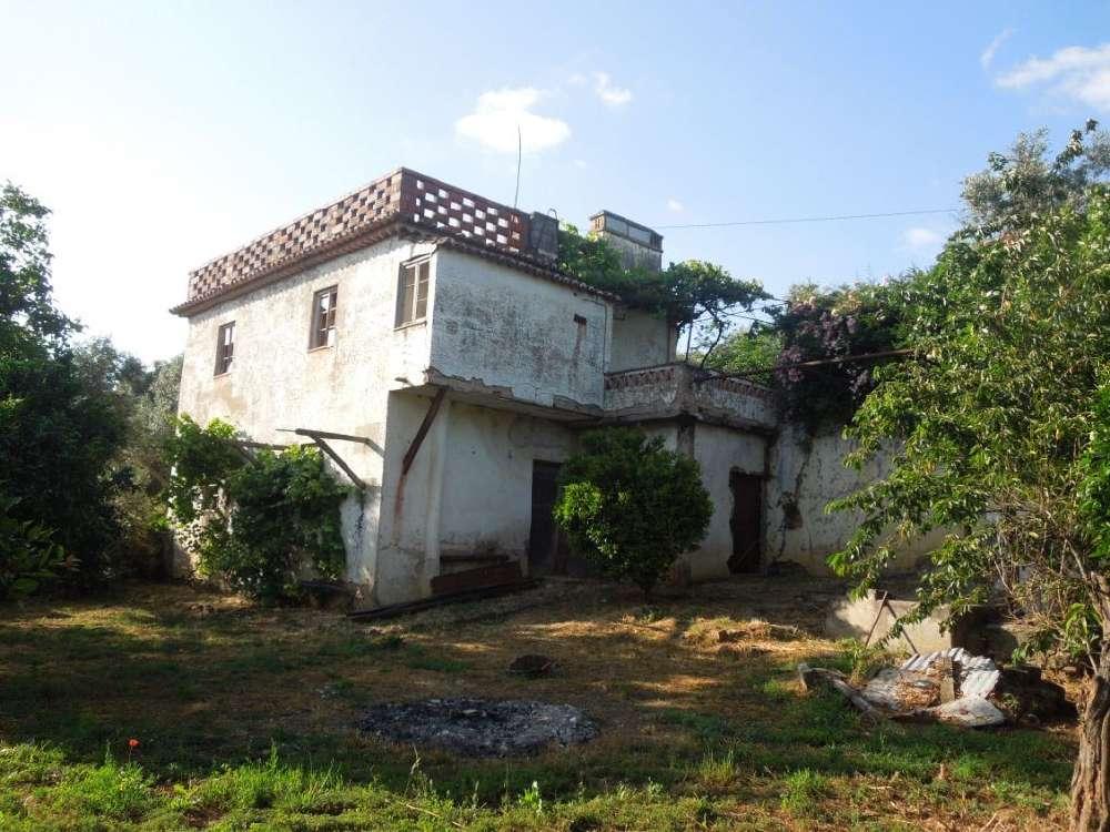 Castelo de Vide Castelo De Vide house picture 171433