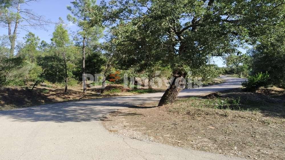 Vila Nova da Barquinha Vila Nova Da Barquinha hus photo 173165