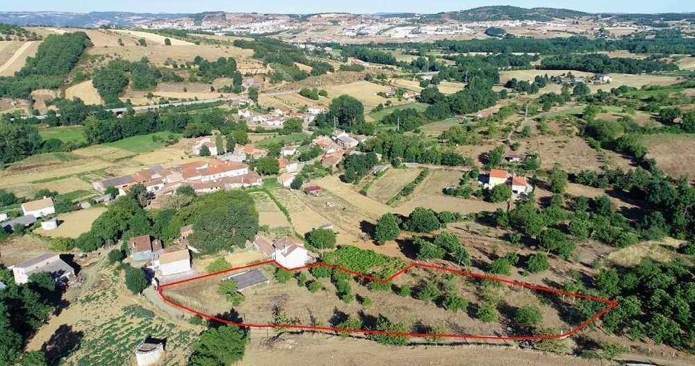 Meixedo Bragança terrain picture 169790