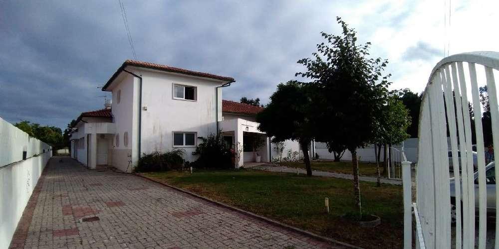 Cantanhede Cantanhede Haus Bild 180384