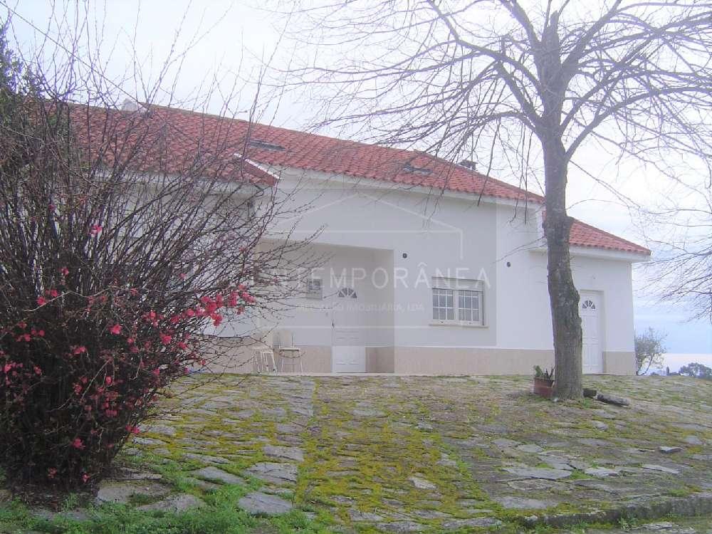 Mirandela Mirandela house picture 184973