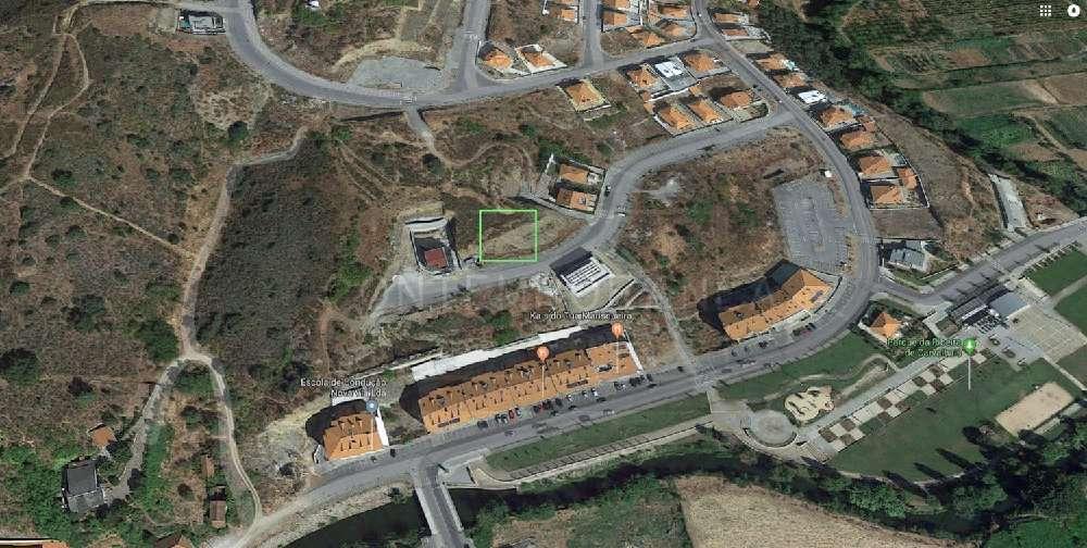 Mirandela Mirandela terrain picture 184976
