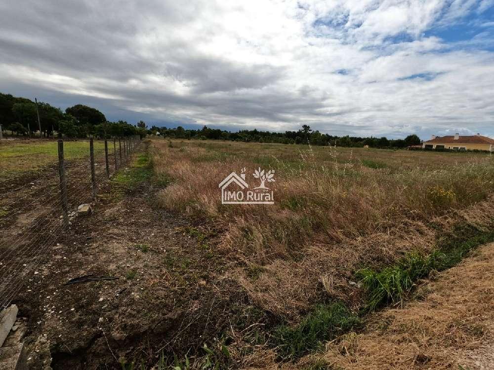 Salvaterra de Magos Salvaterra De Magos 土地 照片 #request.properties.id#