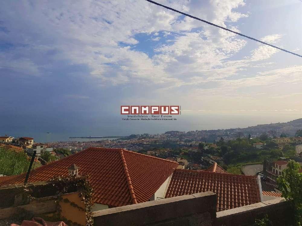 Funchal Funchal villa picture 175344