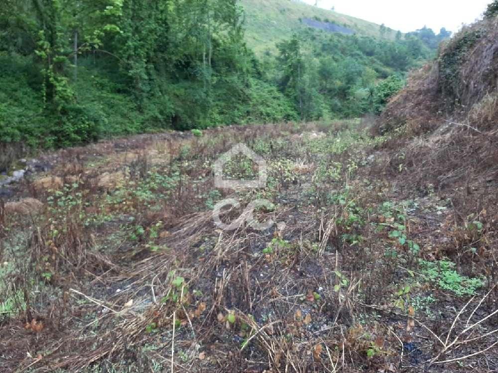 Crasto Celorico De Basto terrain photo 170025