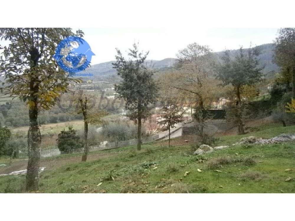 Braga Braga terrain picture 180760