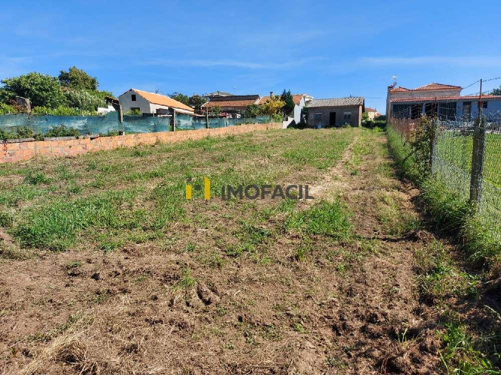 Matosinhos Matosinhos terrain picture 182863
