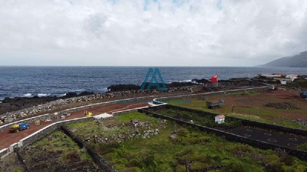 São Roque do Pico São Roque Do Pico terrain picture 186106