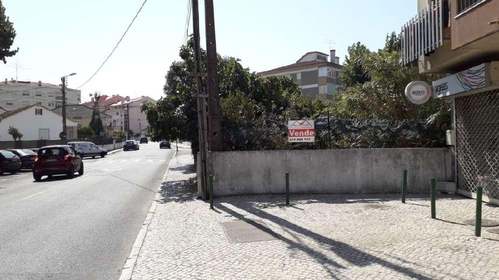 Sintra Sintra terrain picture 190067