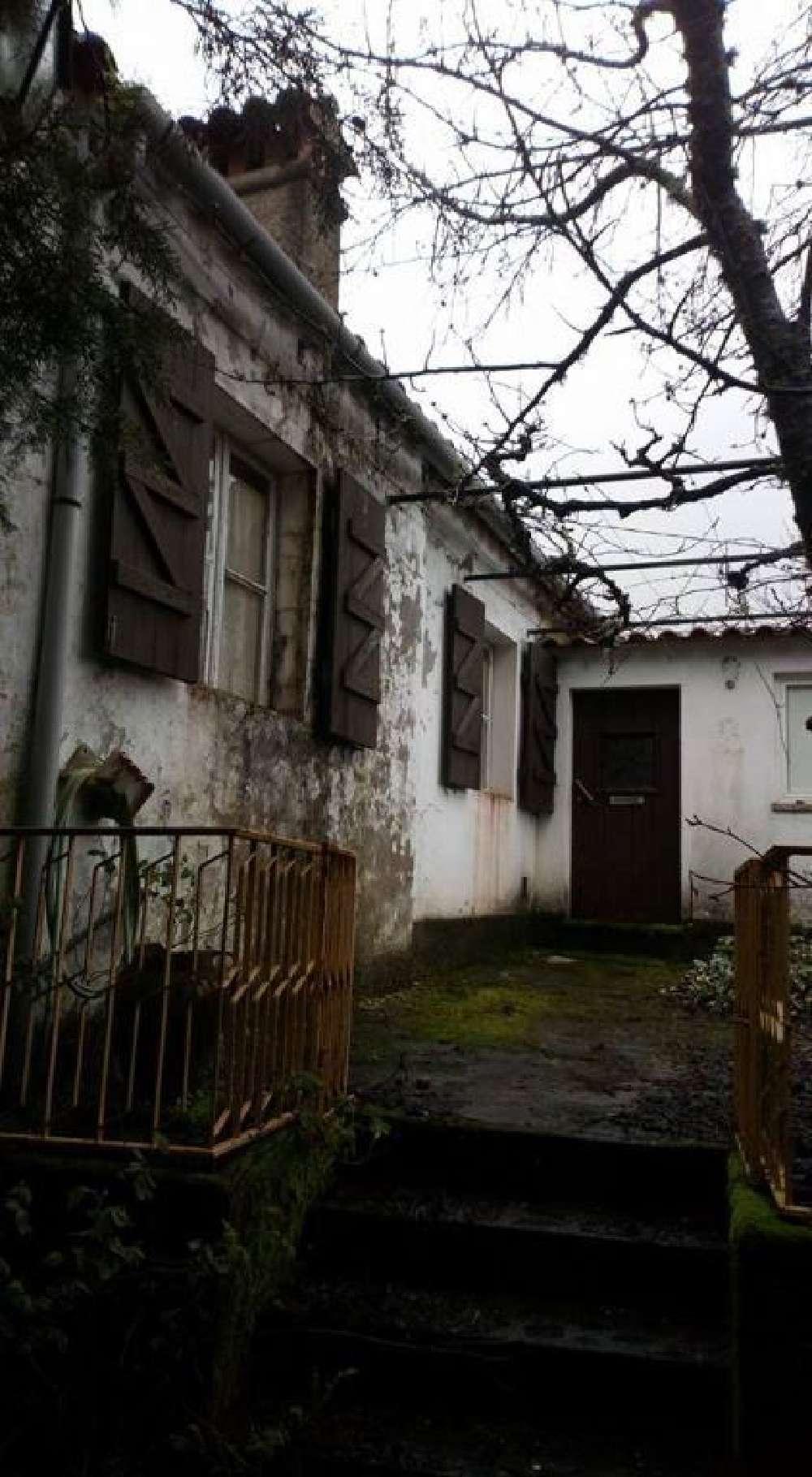 Tapada de Mouro Marvão house picture 171333