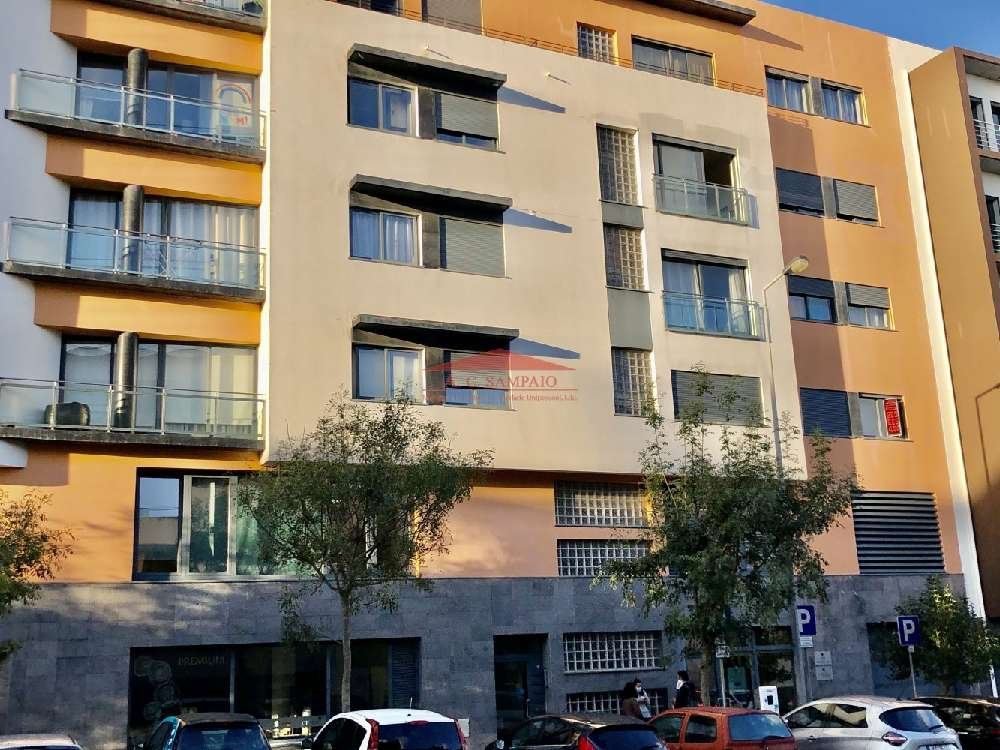 Ponta Delgada Santa Cruz Das Flores apartment picture 173836